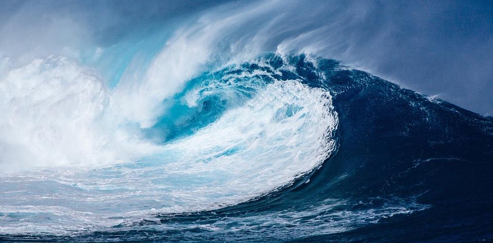 vlna na moři
